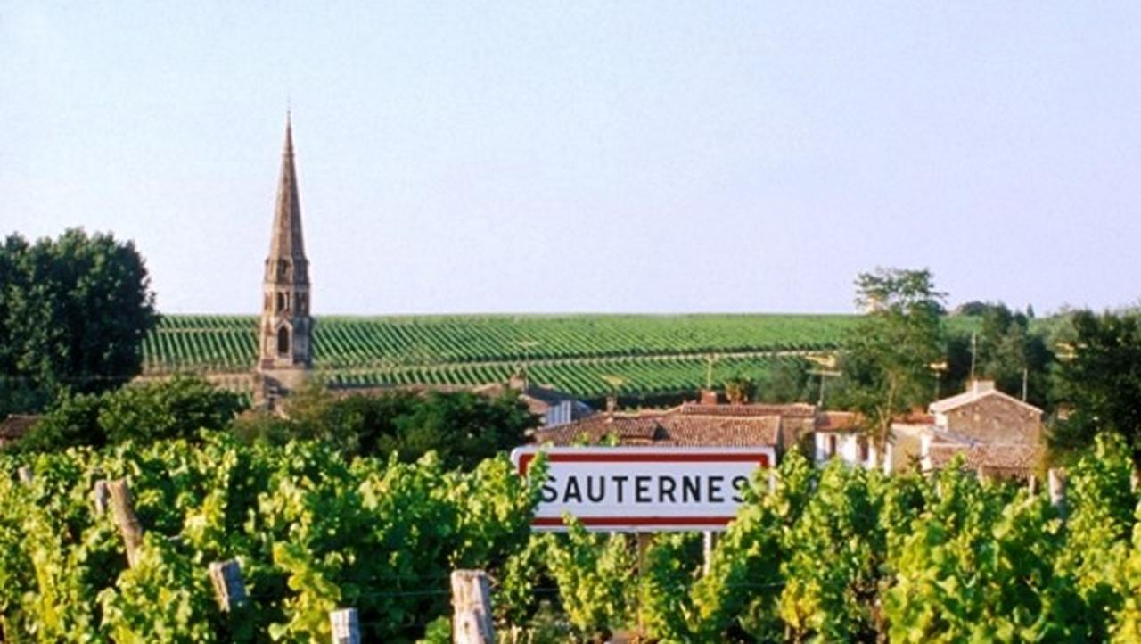 Sauternes village 4